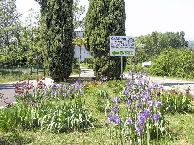 entrance iris campsite south ardèche